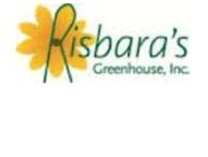 Risbara's