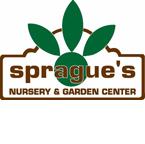 Sprague's