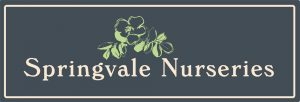 Springvale